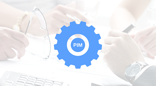 COMO IMPLEMENTAR UN SOFTWARE PIM CABECERA 1